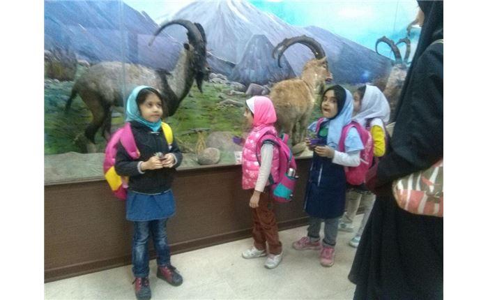 دبستان دخترانه رافعه- پردیس کشاورزی دانشگاه تهران