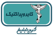 دکتر سید شمس الدین محمد شمس